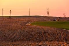 Paesaggio naturale dei campi agricoli ad inizio della molla Fotografia Stock
