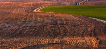 Paesaggio naturale dei campi agricoli ad inizio della molla Fotografia Stock Libera da Diritti