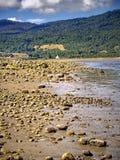 Paesaggio naturale della spiaggia Fotografia Stock