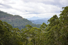 Paesaggio naturale dello Sri Lanka Fotografia Stock