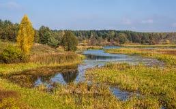 Paesaggio naturale di autunno - alberi variopinti e fiume Immagini Stock Libere da Diritti