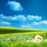 Paesaggio naturale vago Fotografie Stock Libere da Diritti
