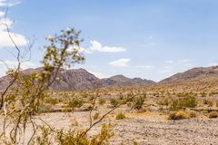 Paesaggio nazionale della montagna del deserto della prerogativa del Mojave Fotografie Stock