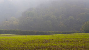 Paesaggio nebbioso Fotografie Stock Libere da Diritti