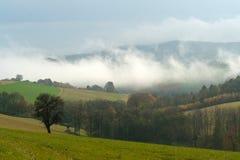 Paesaggio nebbioso all'autunno fotografia stock