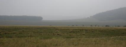 Paesaggio nebbioso con il pascolo, il legno e le colline di lite Fotografia Stock Libera da Diritti