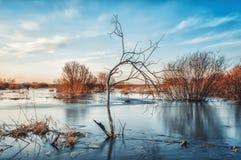 Paesaggio nebbioso del fiume Fotografie Stock Libere da Diritti