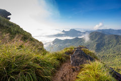 Paesaggio nebbioso della montagna Fotografia Stock