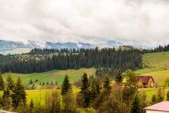 Paesaggio nebbioso della montagna Immagini Stock Libere da Diritti