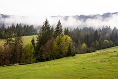 Paesaggio nebbioso della montagna Fotografie Stock
