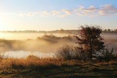 Paesaggio nebbioso della natura sulla mattina in anticipo di autunno La Russia Immagine Stock Libera da Diritti
