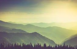 Paesaggio nebbioso delle colline della montagna di estate fotografie stock