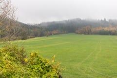 Paesaggio nebbioso di autunno Fotografia Stock