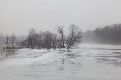 Paesaggio nebbioso di inverno Immagine Stock