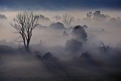 Paesaggio nebbioso di mattina nel River Valley immagini stock