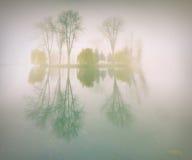 Paesaggio nebbioso di mattina nella sosta di autunno Immagine Stock