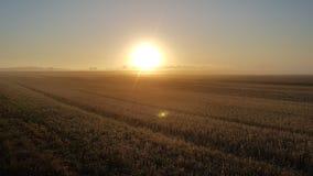 Paesaggio nebbioso di tramonto alla campagna fotografia stock