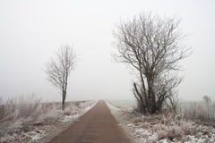 Paesaggio nebbioso misterioso del campo di inverno Fotografie Stock
