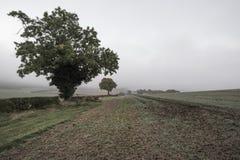Paesaggio nebbioso nebbioso di mattina di autunno in campagna britannica Fotografia Stock Libera da Diritti