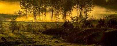 Paesaggio nebbioso rurale immagine stock libera da diritti