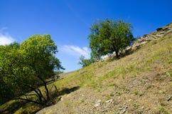 Paesaggio negli altopiani Fotografie Stock