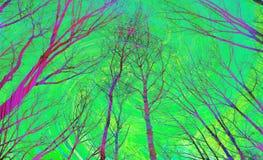 Paesaggio nei colori fantastici Alberi porpora contro un cielo verde intenso Immagini Stock Libere da Diritti