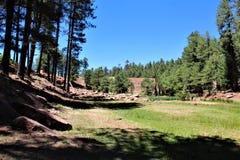 Paesaggio nel lago canyon di legni, la contea di Coconino, Arizona, Stati Uniti immagini stock