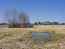 Paesaggio nel muschio di Murnau in Baviera superiore fotografia stock