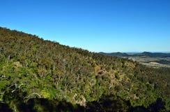 Paesaggio nel parco nazionale di Bunya Immagine Stock Libera da Diritti