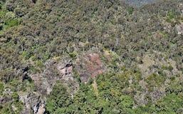 Paesaggio nel parco nazionale di Bunya Immagine Stock