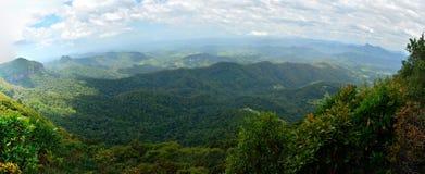 Paesaggio nel parco nazionale di Springbrook in Australia Fotografia Stock
