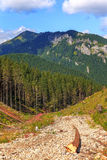 Paesaggio delle montagne di Tatra Immagini Stock Libere da Diritti