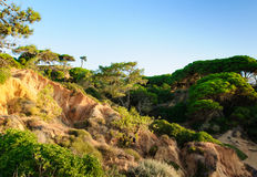Paesaggio nel Portogallo, Albufeira fotografia stock libera da diritti