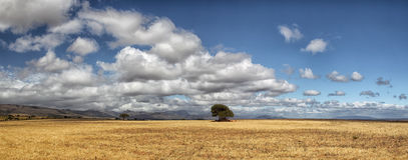 Paesaggio nel Sudafrica Immagine Stock