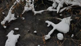 Paesaggio nell'acqua corrente di inverno della natura di legni, piccolo fiume dell'insenatura nella neve Fotografia Stock