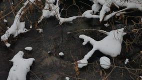 Paesaggio nell'acqua corrente di inverno della natura di legni, piccolo fiume dell'insenatura nella neve Immagini Stock