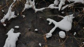 Paesaggio nell'acqua corrente di inverno della natura di legni, piccolo fiume dell'insenatura nella neve Immagine Stock