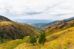 Paesaggio nell'alpeggio dello Sri Lanka Fotografie Stock