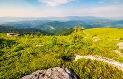 Paesaggio nella cresta carpatica dell'alta montagna Fotografie Stock Libere da Diritti