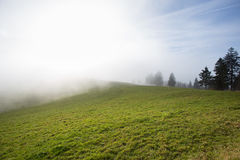 Paesaggio nella foresta nera, Germania Fotografia Stock Libera da Diritti