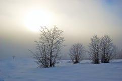 Paesaggio nella nebbia immagine stock