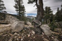 Paesaggio nella sierra Nevada Mountains Fotografie Stock Libere da Diritti