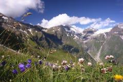 Paesaggio nelle alpi, Austria Fotografie Stock Libere da Diritti