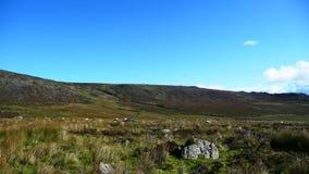 Paesaggio nelle montagne fotografia stock