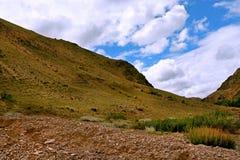 Paesaggio nelle montagne di Altai della Russia Immagini Stock Libere da Diritti