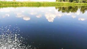 Paesaggio nelle zone umide di delta di Danubio, Romania - videoripresa stock footage