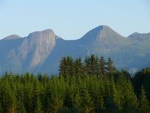 Paesaggio Nesjestranda della Norvegia fotografia stock