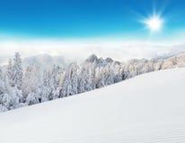 Paesaggio nevoso alpino di inverno Fotografia Stock