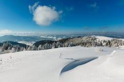 Paesaggio nevoso della montagna di inverno Immagini Stock