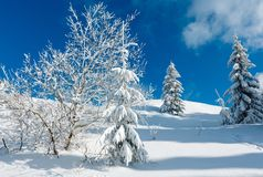Paesaggio nevoso della montagna di inverno Fotografia Stock